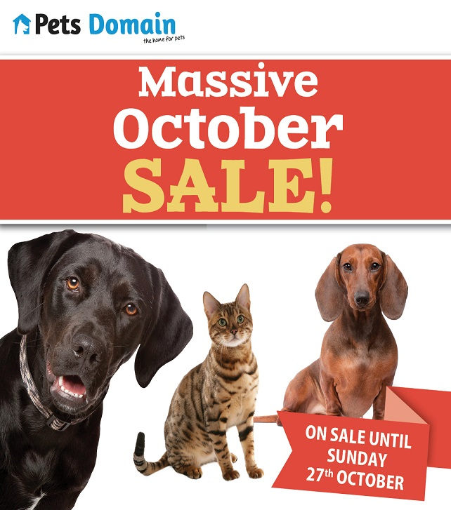 Pets Oct 642
